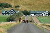 19090310_IcelandSeptember-3582