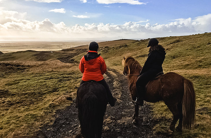 Mountain horseback riding in Iceland