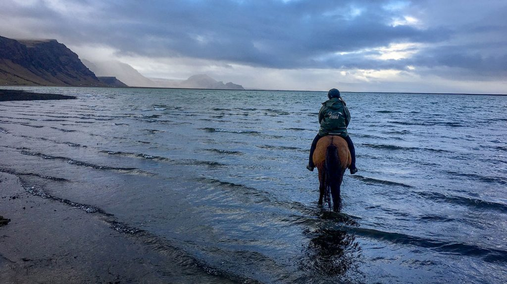 Black sand beach horseback riding tour in Iceland