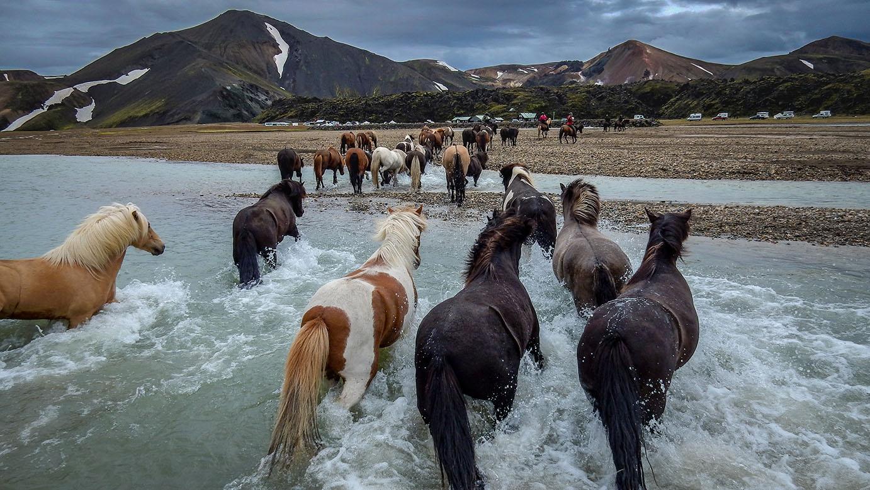 Landmannalaugar Horseback riding tour (8)
