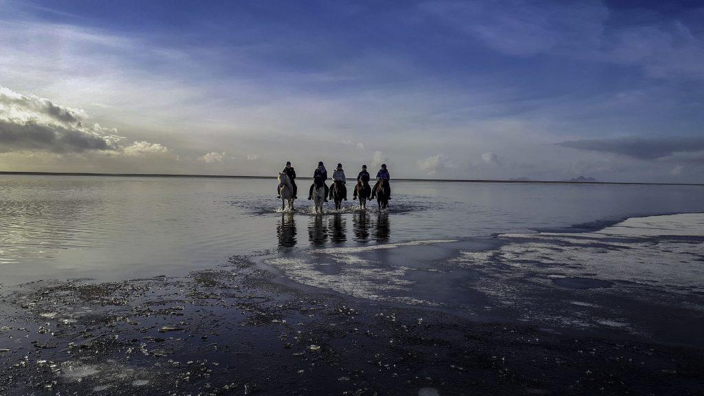 Black beach horseback riding tour11