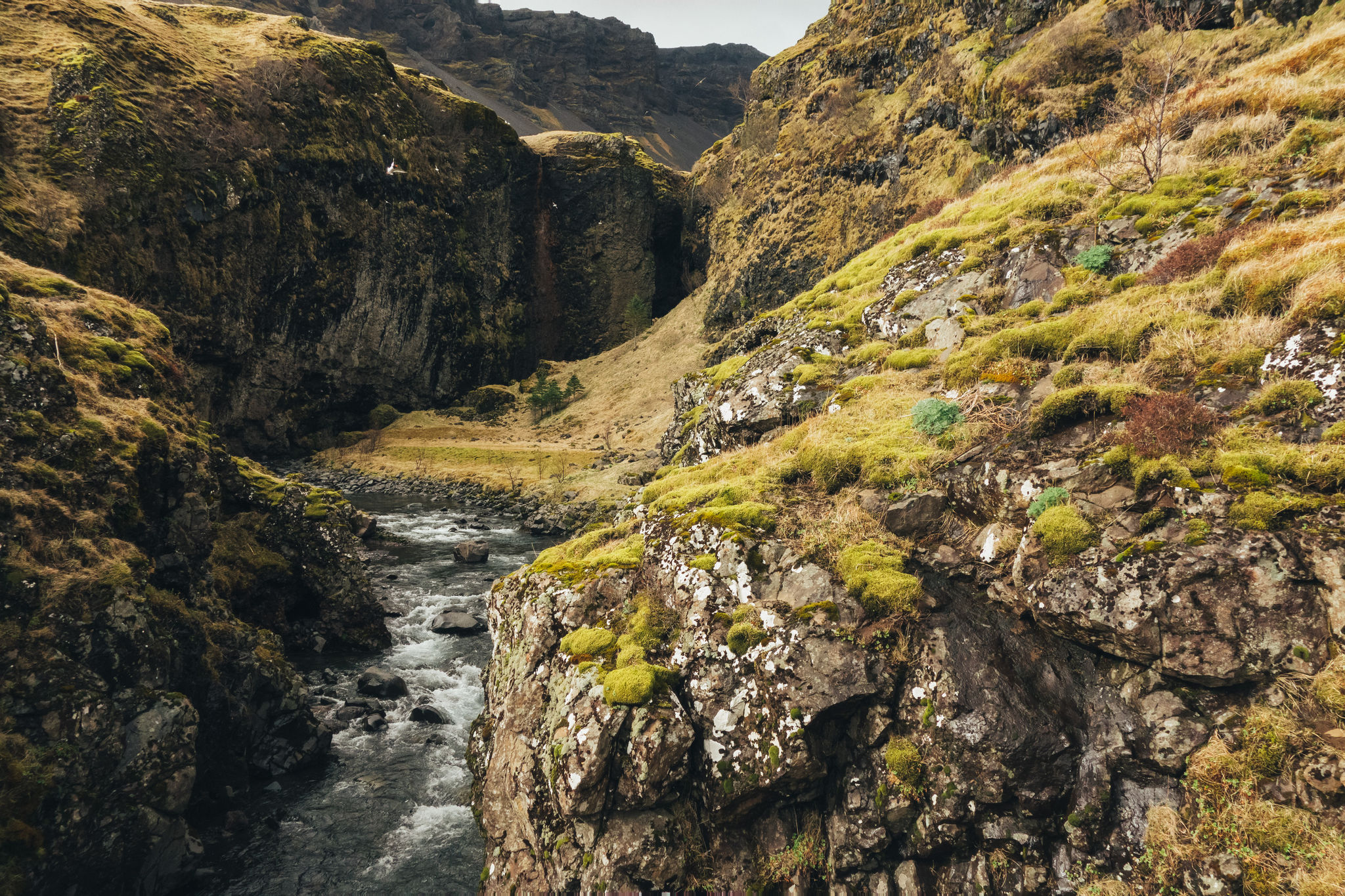 180426_Iceland-1029 – Kopie